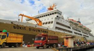 Cargo Murah Jakarta ke Palangkaraya